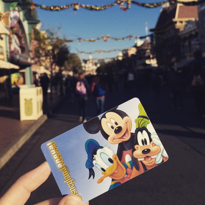 Disneyland Bucket List 8